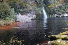 Franklin river AUSTRALIE février 2020